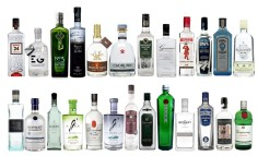 25 Gins